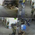 Prepad izveli padobranci! Umesto napuštene baze uleteli u fabriku suncokretovog ulja