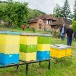 Bojana studira i uspešno se bavi se pčelarstvom
