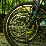 Biciklista na Fruškoj gori zadobio povrede kičme
