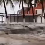 STRAŠNO NEVREME U MEKSIKU Uragan Nora rušio drveća, oštetio puteve, jaka kiša izazvala poplave