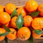 Ovakvu zimnicu niste probali: Recept za mandarine u tegli