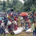 IZVEŠTAJI U KONGU POKAZALI Novi slučaj ebole na istoku zemlje